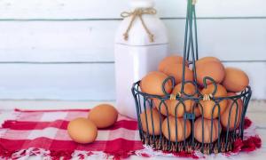 osakesalkku osakkeet kori kananmunat sijoittaminen