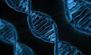 geeniteknologia-sijoittaminen-102016