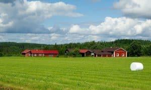 maaseutu Suomi pelto aluepolitiikka
