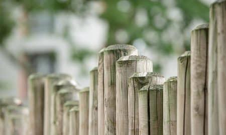 Kasvuyrityksen arvostustasoa miettiessä yksi olennainen kysymys on kuinka kauan kasvu voi jatkua. Kasvun rajat tulevat jossain vaiheessa vastaan. Kasvun rajoja ymmärtämällä sijoittaja voi arvioida onko yrityksellä tarpeeksi kasvuvaraa oikeuttamaan tunnusluvuilla mitatut korkeat arvostustasot. Kasvusijoittaminen ja osakesijoittaminen.