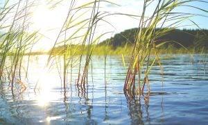 Suomi matkailu järvi
