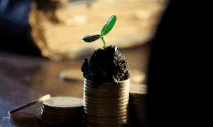 Osinkojen maksu ei ole aina järkevää, ja yritysten halukkuus maksaa osinkoja on vähentynyt.