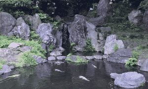 Japani matkakohde matkabudjetti