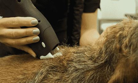 Karhia trimmeri nopeuttaa trimmausta ei rasita sormia ja tuottaa usein käsinnypintää tasaisemman trimmaustuloksen