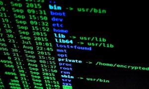 hakkerointi kryptovaluutat rikos talous