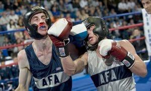 nyrkkeily taistelu riita nyrkkeilijät talous