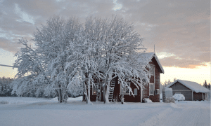 joulu 2018 mökki asunto talvi