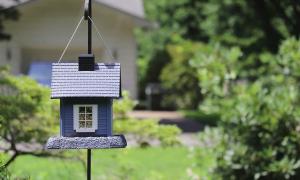 piha asunto omakotitalo kotitalo kesä asunnot asuntomarkkinat talous