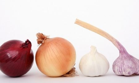 sipuli sipulit ruoka ruokamenot talous
