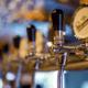 panimo pienpanimo olut sijoittaminen talous