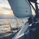 purjevene vene veneily talous