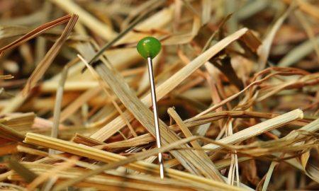 Kasvu tulisi tunnistaa ennen kuin se tapahtuu ja tässä artikkelissa kerrotaan kolmel tapaa löytää tulevaisuuden FAANG osake